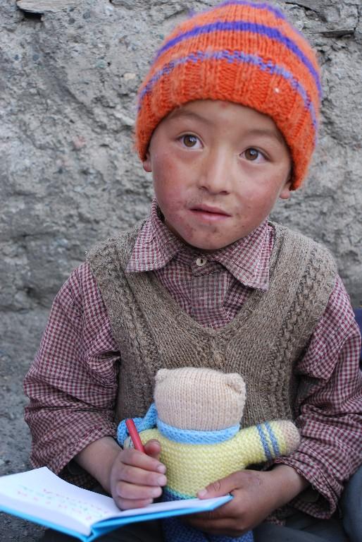 new-toys-markha-ladakh_1024x768
