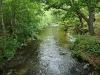 idyllic-river