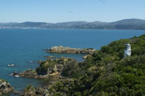 The lighthouse on Matiu Somes Island