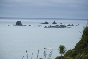 The pinnacles off Cape Foulwind