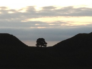 One of the iconic views along Hadrian's Wall