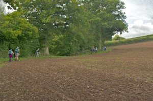Skirting round the edge of a newly prepared field