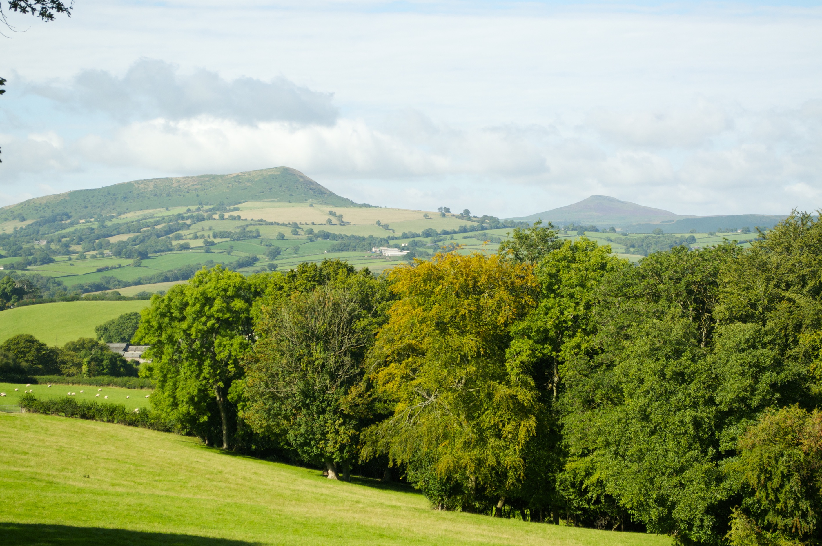 The Skirrid and Sugarloaf with a hint of autumnal colours in the foreground