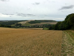 Harvested fields showing the downland nature of the route