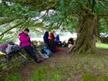 Lunch under the yews at Capel-y-ffin