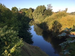 The Teme at Knighwick