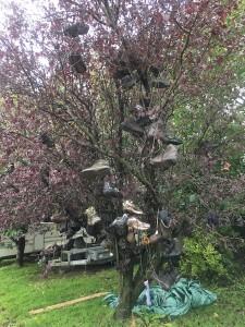 A shoe tree!
