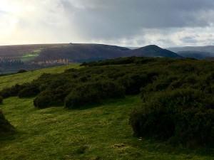 The Hergest Ridge